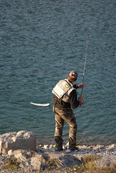 Pêcheur à la mouche