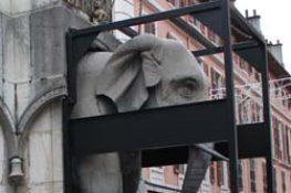 Dépose des Éléphants