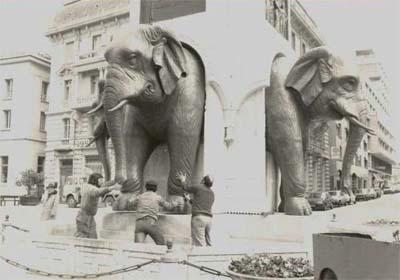 Les éléphants Chambéry
