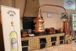 Distillerie des Alpes - Alambic