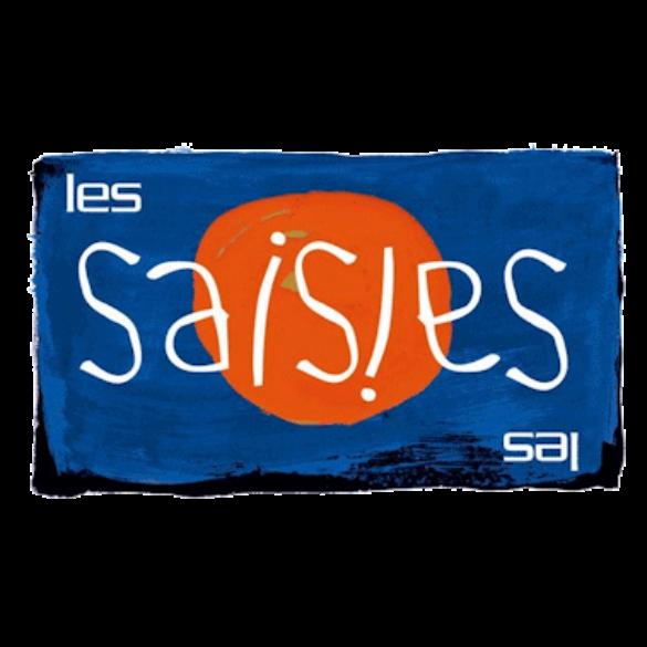 logo les Saisies